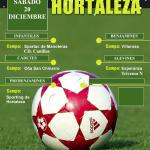 Cartel Torneo Navidad Hortaleza 2014