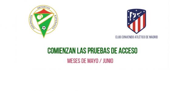 Abierto el periodo de Pruebas para la Temporada 2019-20